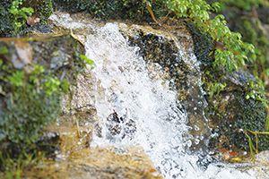 エナミズは極生天然水